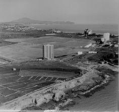 Salinas 1970.