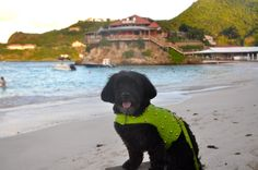 Dressed for dinner while staying at Eden Rock, St Barts