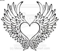 Image result for images of angel wings