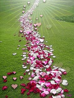 May love go before and behind you..everywhere your paths may lead!