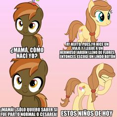 Mlp Memes, Little Poni, Imagenes My Little Pony, Fluttershy, Family Guy, Marvel, Country, Funny, Fictional Characters