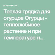 Теплая грядка для огурцов Огурцы - теплолюбивое растение и при температуре н...