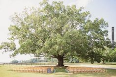 wedding ceremony decor | CHECK OUT MORE IDEAS AT WEDDINGPINS.NET | #weddings