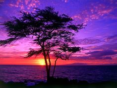 Maui, Hawaii - For my Honeymoon..one of my favorite moments was seeing a purple sunset during a romantic dinner from the top floor of an open air seaside restaurant  <3