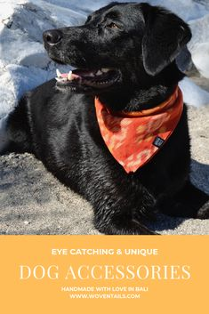 Searching for unique Dog Accessories? We have Dog Collars, Bandanas and Leashes made out of beautiful handwoven Balinese fabric. Ikat Fabric, Balinese, Dog Collars, Dog Bandana, Beautiful Islands, Bandanas, Dog Accessories, Making Out, Searching