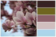 #kolory #colours #nature #kwiaty #wiosna Autor zdjęcia: Mariusz Szczepaniak