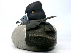 Jason Lucio, World Class Duck Decoys, Bird Carvings,Birds of Prey, Wildfowl Art & Wildlife Paintings