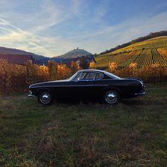 1967 p1800 #volvo #classic #Elsass #vineyard
