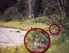 Even if you don't believe in paranormal phenomena like ghosts or Bigfoot, these photos will make you think twice. Catch a glimpse of some spooky pictures. Real Ghost Pictures, Ghost Images, Ghost Pics, Scary Stories, Ghost Stories, Ghost Hauntings, Ghost And Ghouls, Real Ghosts, Spiritus