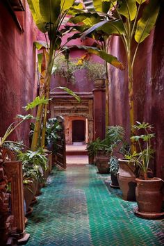 Riad Madini Marrakech, interior design, home decor, hallways, flooring, plants