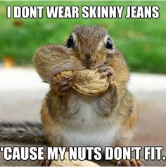 get it? nuts..