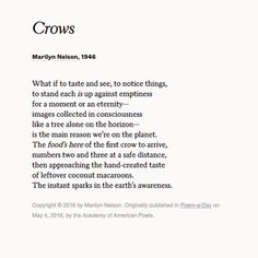 """""""Crows"""" by Marilyn Nelson. Read more poems at Poets.org."""