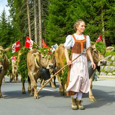 Events of international and national importance: Exhibitions – Customs, Festivities and Markets – Festivals and Musicals – Fairs and Congresses – Sports Events European Festivals, Switzerland Tourism, Running Of The Bulls, Bastille Day, Salzburg, Fall Season, My Father, Cows, Barns