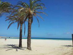 San Vito Lo Capo Beach - Trapani   Sicily