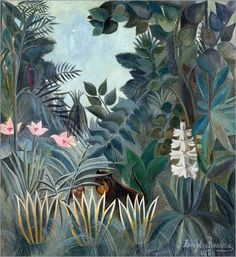 Forex 70 x 80 cm: The Equatorial Jungle, 1909 de Henri Rousseau / Bridgeman Art Library: Henri Rousseau: Amazon.es: Hogar