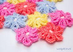 Bloemetjes haken? Ga aan de slag met deze funny flowers! Kies je favoriete kleuren en maak met dit gratis patroon en instructievideo deze leuke bloemen..