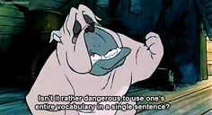 Oliver and Company. One of the greatest insult ever. @Jess Liu Agnor, @Julie Forrest DeBonis