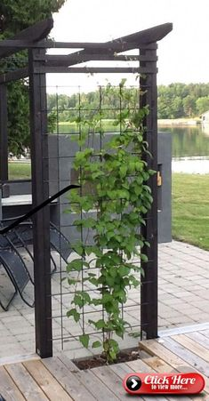 Garden Plans Gardening Designs Ideas, our best designs 1377603562 to try. Find inspiration now! Garden Plans Gardening Designs Ideas, our best designs 1377603562 to try. Find inspiration now! While ancient in idea, a pergola. Diy Pergola, Modern Pergola, Corner Pergola, Black Pergola, Back Gardens, Outdoor Gardens, Outdoor Spaces, Outdoor Living, Privacy Landscaping