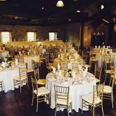 Classic white and gold for a classic couple! Wedding Chairs, Classic White, Event Decor, Fall Wedding, Table Settings, Reception, Table Decorations, Ottawa, Perth