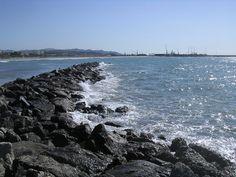 El mediterrani de Vilanova : La nostra mar a la nostra terra.... | pereguinovartfig