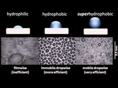(93) Comparison of condensation on hydrophilic, hydrophobic, and superhydrophobic surfaces - YouTube