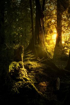 ...And there was light by Carlos Rojas on 500px
