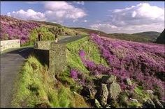 Filming location. P.S. I Love You.Sally Gap,Co.Wicklow, Ireland.