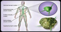 cancer-101-s10-lumph-nodes