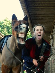12 Sychronized Horse/Human Facial Expressions