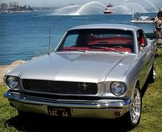 Fidel Acosta shares the story of his beautiful 1966 Mustang Fastback build. If you are into classic Mustangs you will find it very interesting. 1966 Mustang Fastback, 1966 Ford Mustang, Mustang Cars, Carroll Shelby, Classic Mustang, Pontiac Gto, Mustangs, Hot Cars, Muscle Cars