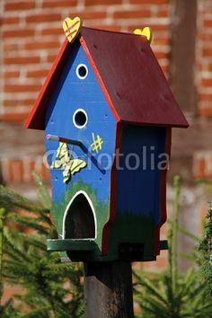 Buntes Vogelhaus
