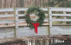 Lisa Bauer, Grounds Manager at the EJC Arboretum creates lovely holiday wreaths decorating the arboretum during the holiday season for all to enjoy.