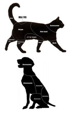 Petting Guide