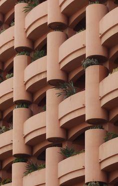 Splendid Close-ups by Louis MacLean – Fubiz Media Grammar, Photography, Spain, Photograph, Fotografie, Photoshoot, Fotografia