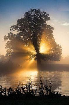 Langley Country Park, Buckinghamshire, England