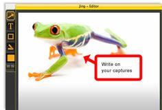 Jing - A program that allows you to instantly capture images and record video on your computer and share them with anyone.