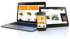 How has Mobile Website Design Earned such Diverse Popularity?