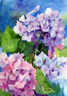Pretty pink and purple hydrangeas, flower painting by Marni Maree Watercolour Painting, Watercolor Flowers, Painting & Drawing, Watercolors, Arte Floral, Art Aquarelle, Botanical Art, Flower Art, Beautiful Flowers