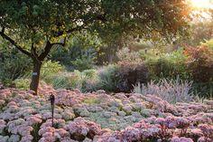Domenico Montevecchi's garden Saluzzo - Piedmont - Italy