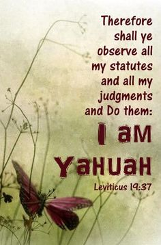 Leviticus - the call for obedience from YHVH Spiritual Warfare, Spiritual Wisdom, Bible Dictionary, Spirit Of Truth, Bible Study Tools, Thing 1, Bible Truth, Torah, Bible Verses Quotes