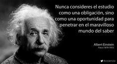 Nunca consideres el estudio como una obligación, sino como una oportunidad para penetrar en el maravilloso mundo del saber (Albert Einstein)