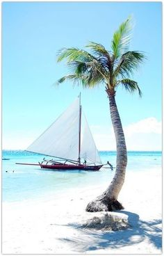 Art Symphony: Sailing...