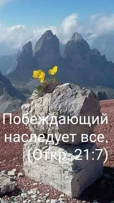 Bible, Faith, Words, Nature, Travel, Biblia, Naturaleza, Viajes, Destinations