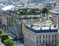 The roof of the Publicis Groupe's building in Paris is home to a variety of trees and potted plants, providing a peaceful retreat for employees. Photo via Pbase.