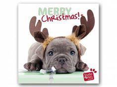 Myrna - Print Arts von Studio PetsMyrna Weihnachtskarte: Welpe Weihnachts Elch