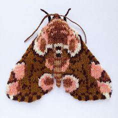 989 отметок «Нравится», 72 комментариев — Max Alexander (@maxsworld) в Instagram: «Peach blossom moth. Hand knitted in Shetland wool,18x15cm. I love how 70's this moth looks. #moth…»