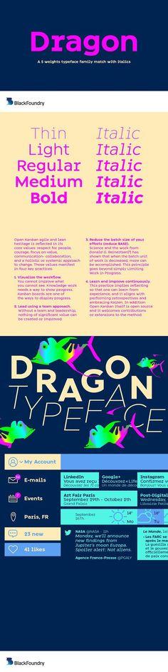 Dragon Full Family. Sans Serif Fonts. $189.00