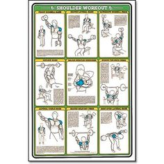 Dumbbell Workout Ii 24 X 36 Laminated Chart Shoulder Back Leg Calf