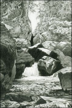 Pencil Drawings Laurel Mountain Detail 2 by John Yothers - Tree Drawings Pencil, Landscape Pencil Drawings, Landscape Sketch, Pencil Art Drawings, Landscape Art, Landscape Paintings, Drawing Rocks, Painting & Drawing, Drawing Drawing