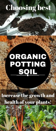 In case that you are looking for a perfect potting ground, I have solved that issue. The best organic potting soil available online is at your disposal. Organic Soil, Organic Gardening Tips, Organic Farming, Urban Gardening, Organic Pesticides, Organic Compost, Eating Organic, Vegetable Garden Tips, Starting Seeds Indoors